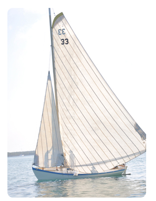 tari anne sail